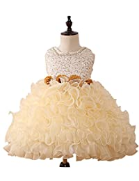 Castle Fairy Baby Girls Ruffle Flower Ball Gowns Party Pageant Cupcake Dresses