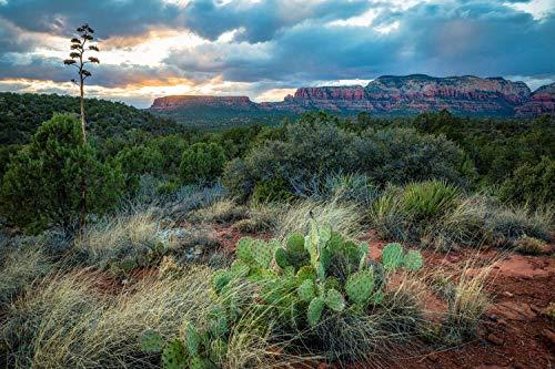 (Southwest Photography Wall Art Print - Picture of Desert Landscape at Sunset Near Sedona Arizona Western Decor 5x7 to)