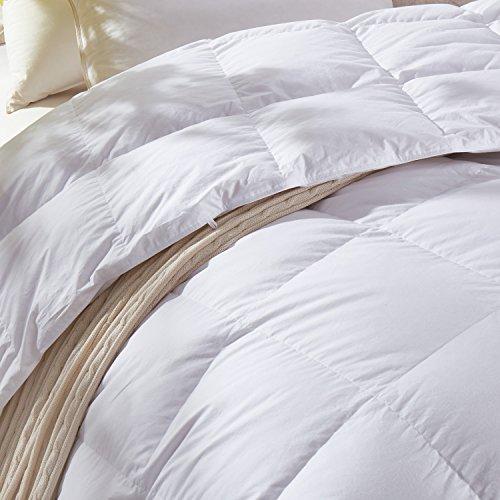 C&W Luxurious Goose Down Comforter King Size Duvet Insert 800TC, 58 Oz Fill Weight ,All Season Lightweight Down Comforter (King Size,White)