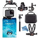 GoPro Hero7 Hero 7 Waterproof Digital Action Camera Body Bundle (Silver)
