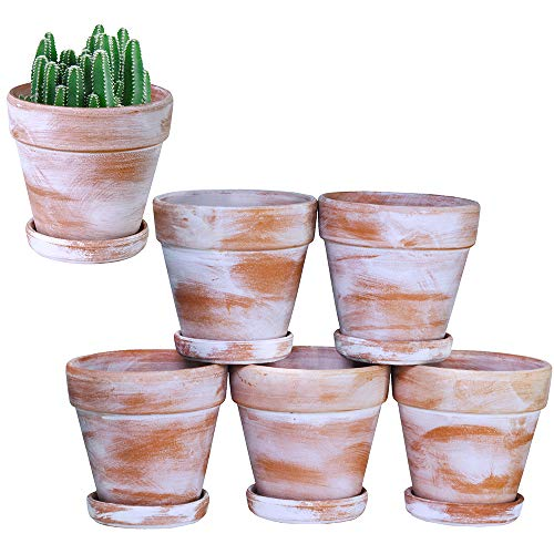 Aged Terra Cotta Pots with Saucer 6-Pack 4'' Weathered Clay Ceramic Pottery Planter Cactus Flower Pots Succulent Pot Drainage Hole- Great for Plants,Crafts,Wedding Favor Indoor/Outdoor Plant Crafts Aged Terra Cotta Pot