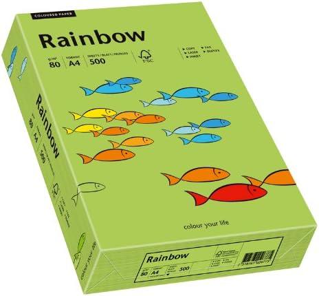 Papyrus 88042651 Drucker-/Kopierpapier bunt, Bastelpapier: Rainbow 80 g/m², A4 500 Blatt, matt, grün