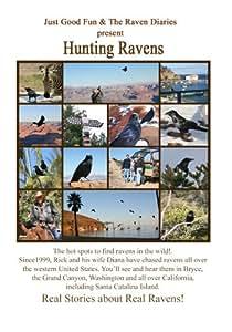 Hunting Ravens