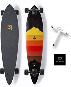 Arbor Collective Artist Collection Skateboard Bundled with Swell Skate-Tool + Crate White Shark Sticker
