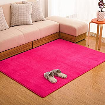 Ustide Hot Pink Carpet For Girls Coral Fleece Rug Soft Memory Foam Rugs Set  Modern Non
