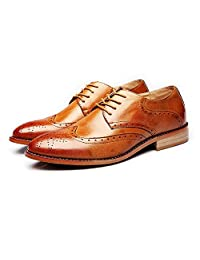 Sunny&Baby Men's Business Brogue Shoes Matte Breathable Wingtip Hollow Carving Genuine Leather Lace up Lined Oxfords Abrasion Resistant (Color : Brown, Size : 10MUS)