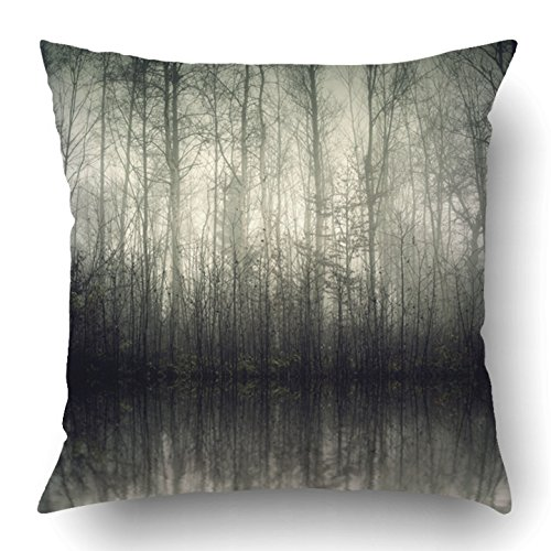 Covers Blue Tree of Beautiful Forest with Fog in Bavaria Germany Green Dark Landscape Fantasy Lake Mystic Polyester 18 X 18 Inch Square Hidden Zipper Decorative Pillowcase (Bavaria Square Print)