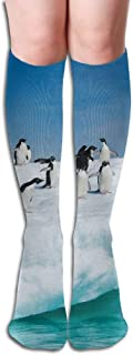 Xukmefat Antarctic Penguin Women's Fashion Knee High Socks Casual Socks