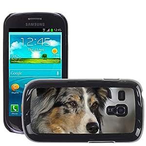GoGoMobile Slim Protector Hard Shell Cover Case // M00118221 Australian Shepherd Dog Pet // Samsung Galaxy S3 MINI i8190