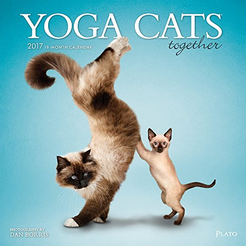 Yoga Cats Together 2017 Square Plato