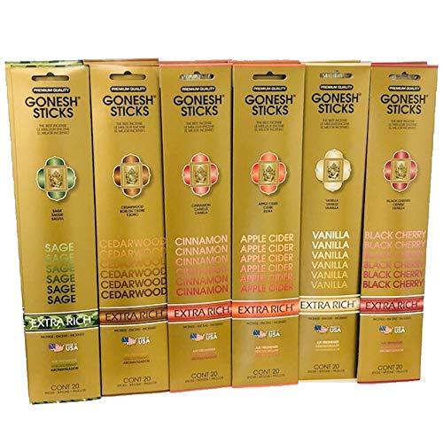 GONESH HOLIDAY VARIETY GIFT ASSORTMENT (12 packs, 240 sticks total of Sage, Cedarwood, Cinnamon, Apple Cider, Vanilla, and Black cherry)