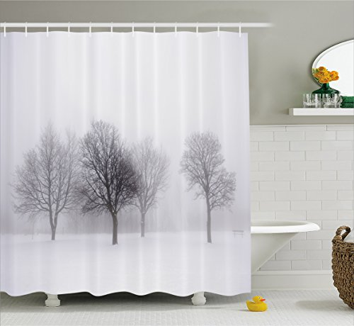 Ambesonne Winter Decorations Shower Curtain, Foggy Winter Scene with Leafless Tree Branch in Hazy Weather Artsy Print, Fabric Bathroom Decor Set with Hooks, 75 Inches Long, -