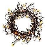 CC Christmas Decor Pre-Lit Black Glittered Artificial Halloween Wreath - 26-Inch, Warm White LED Lights/BO