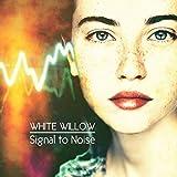 Signal To Noise [VINYL]