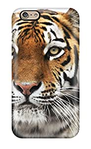 Snap On Hard Case Cover Siberian Tiger Protector For Iphone 6 5341109K66629128