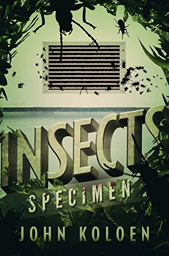 (Insects: Specimen)