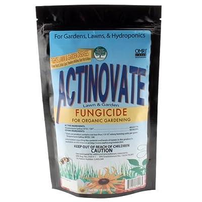 Actinovate NI30745 Lawn & Garden Fungicide, 2oz
