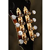 Waverly F-style Mandolin Tuning Machines with Pearl