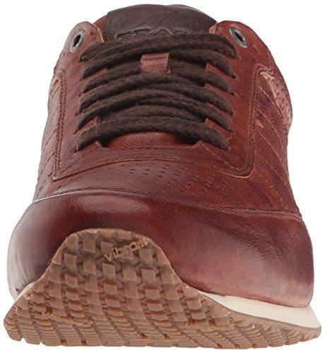 Trask Menns Aiden Mote Sneaker Cognac