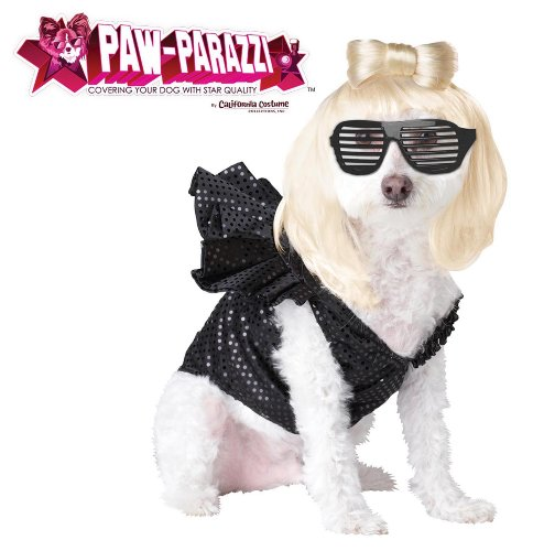 Lady Gaga Black Bodysuit Costume (Pup-A-Razzi Pop Sensation Dog Costume, Large, Black)