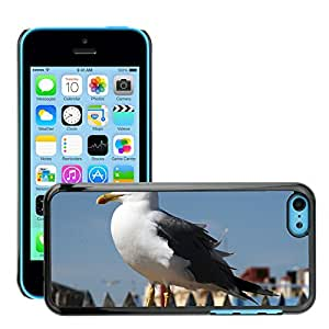 Super Stellar Slim PC Hard Case Cover Skin Armor Shell Protection // M00126382 Seagull Bird Sea // Apple iPhone 5C