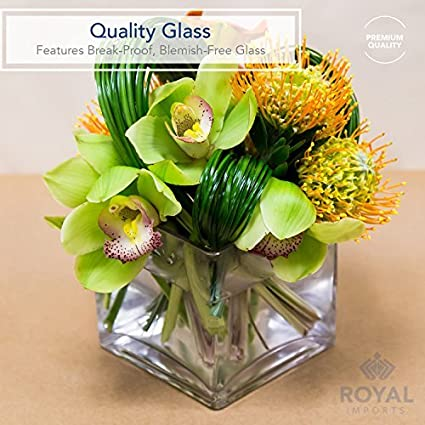 6 Tall Cube Shape Royal Imports Flower Glass Vase Decorative Centerpiece for Home or Wedding Clear Glass 6x6 Opening 6 Tall 6x6 Opening R66