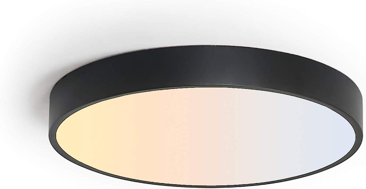 Amazon.com: SviDau Flush Mount LED Ceiling Light Fixture Black 9