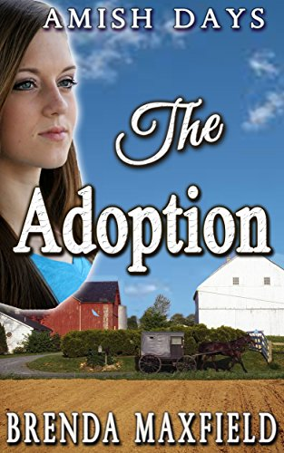 The Adoption (Faith's Story Book 1) by [Maxfield, Brenda]
