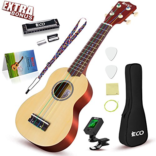 Rainbow Soprano Ukulele Starter Set-21 Inch w/Gig Bag Learn to Play Songbook Digital Tuner Strap All in One Kit by iECO