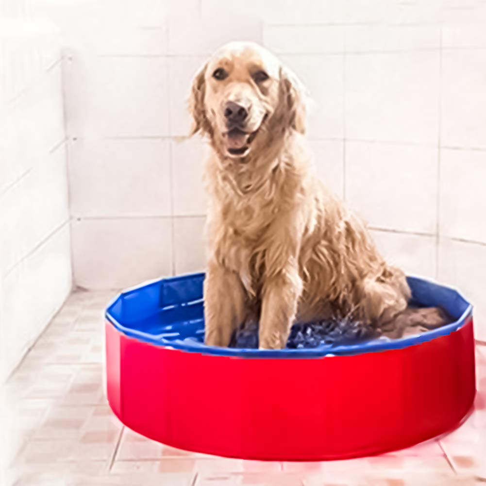 NEEDL CO Foldable Pet Swimming Pool - Pet Outdoor Swimming Playing Pond Dogs Grooming Shower & Kiddie Pools by NEEDL CO (Image #7)
