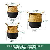 POTEY 730302 Seagrass Plant Basket Set of 3 - Hand