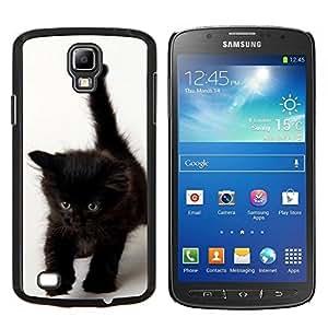 Stuss Case / Funda Carcasa protectora - Gatito de Brown oscuro de los ojos azules - Samsung Galaxy S4 Active i9295