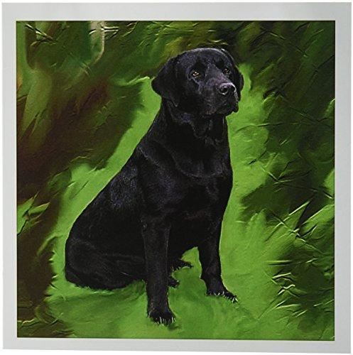 3dRose Black Labrador Retriever - Greeting Cards, 6 x 6 inches, set of 6 (gc_3892_1) (Retriever Birthday Card Labrador)