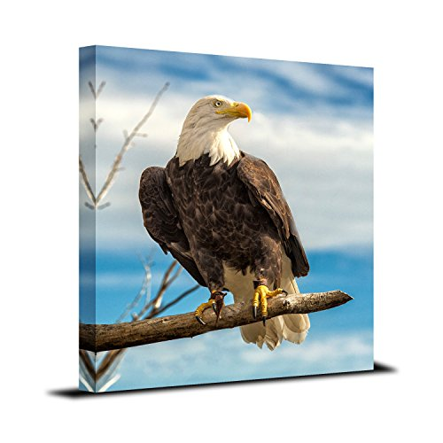 Royllent 1 Panel Framed Wall Decor Art Bald Eagle USA Painting The Picture Print On Canvas For Home Decor Decoration Gift piece (Stretched By Wooden Frame,Ready To Hang) RA-CP0008 (vertical section)
