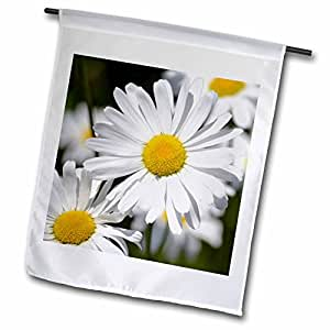 PS Flowers - Pretty Daisy Garden Flowers - Inspired Floral Print - 12 x 18 inch Garden Flag (fl_57918_1)