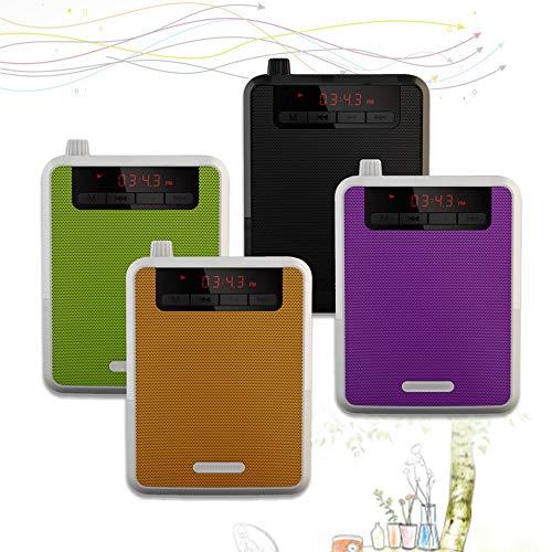 HDT 4 in 1 FM Radio MP3 Player Power Bank Speaker Wireless Voice Amplifier Loudspeaker Microphone Waistband Clip for Guides Teachers (Purple)
