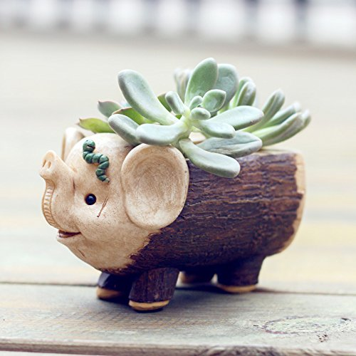 Youfui Cute Animal Flowerpot for Succulent Plants Home Decoration (Ceramic Elephant Planter)