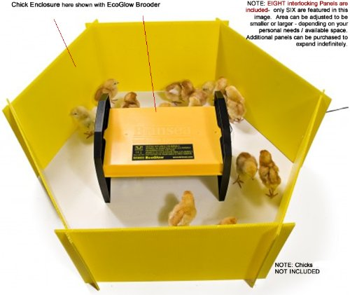 Chick Brooder and Enclosure Pack - Keep Critters Warm and...