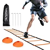 20 cones - YISSVIC Agility Ladder and Cones 20 Feet 12 Adjustable Rungs Fitness Speed Training Equipment + 20 Feet Speed Agility | 1 Carry Bags + 10 Cones + 4 Stakes | Basketball, Soccer, Football (Orange)