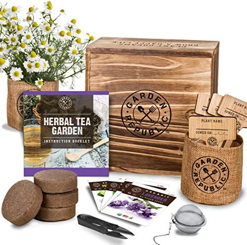Indoor Herb Garden Seed Starter Kit – Organic Herbal Tea Growing Kits, Grow Medicinal Herbs Indoors, Lavender Chamomile Lemon Balm Mint Seeds, Soil, Plant Markers, Planting Pots, Infuser, Planter Box – The Super Cheap