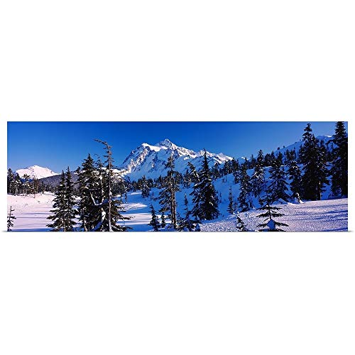 (GREATBIGCANVAS Poster Print Entitled Mt Shuksan viewed from Heather Meadows, Mt Baker Snoqualmie National Forest, North Cascades National Park, Washington State, by 48