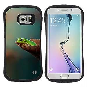 Pulsar iFace Series Tpu silicona Carcasa Funda Case para Samsung Galaxy S6 EDGE , Vuoi sapere Pensate Pastel Green Forest