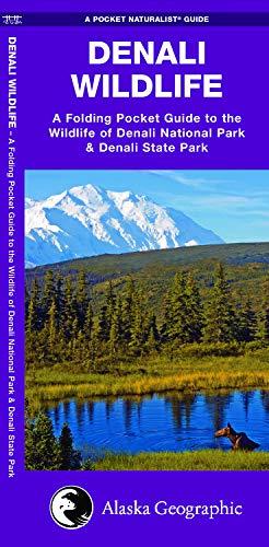 Denali Wildlife: A Folding Pocket Guide to the Wildlife of Denali National Park & Denali State Park (A Pocket Naturalist Guide)