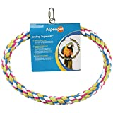 Aspen Pet 56206 Booda 1 Ring Swing N-Feet Perch for Birds, Large