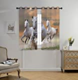 Stylish Window Curtains,Animal Decor,Stallion Horses Running on a Mystical Sky Background Equestrian Male Champions Print,White Orange,2 Panel Set Window Drapes,for Living Room Bedroom Kitchen Cafe