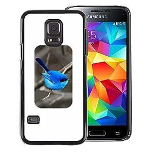 A-type Arte & diseño plástico duro Fundas Cover Cubre Hard Case Cover para Samsung Galaxy S5 Mini (Not S5), SM-G800 (Bird Blue Minimalist Songbird Winter)