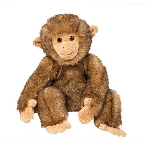 Morocco Macaque Monkey (Monkey Macaque)