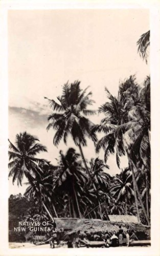New Guinea Natives and Huts Scenic View Real Photo Antique Postcard J66623 (Postcard Native Huts)