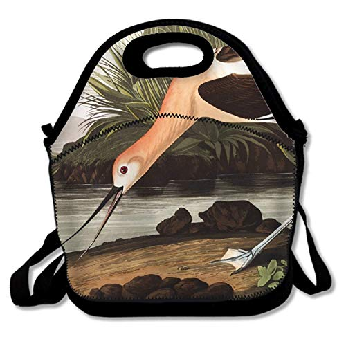 (Insulated Lunch Bag, Animal American Avocet Birds Waders Neoprene Lunch Tote Reusable Picnic Bag Tote Multi-purpose Container with Adjustable)
