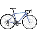 FitWell Bicycle Company 2015 Alex DeGroot II Bicycle, Placid Blue, XX-Large